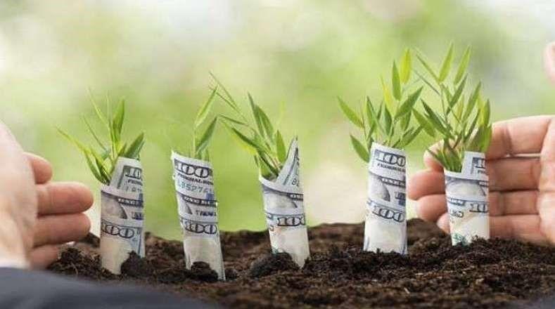 سپردهگذاری در بانک ها (سرمایه گذاری کم ریسک)