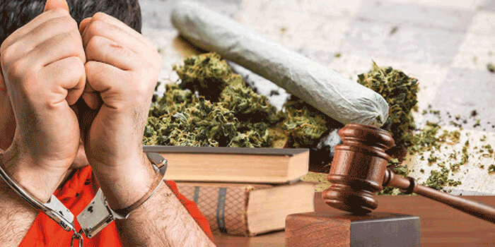 وکیل قاچاق مواد مخدر
